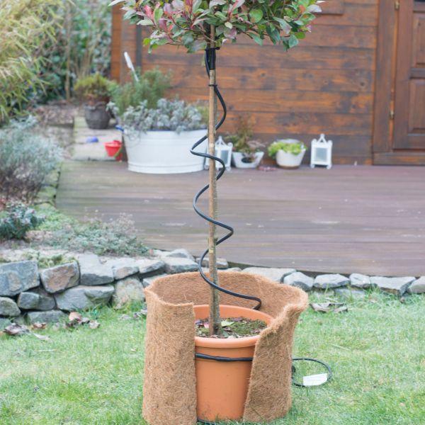 Frostschutz-Heizkabel für Pflanzen 2m grün-schwarz