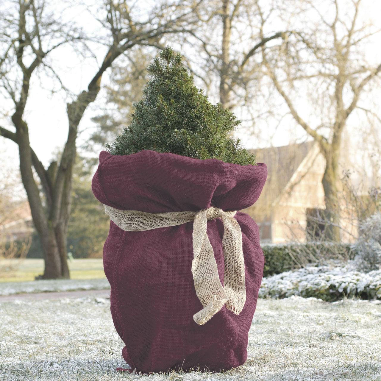 jutesack garten im winter waldbeere. Black Bedroom Furniture Sets. Home Design Ideas