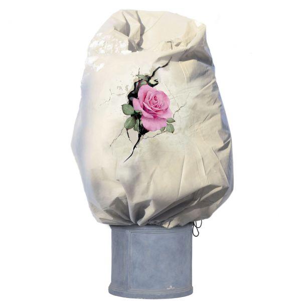 Winterschutz Vlieshaube Rosenblüte, beige