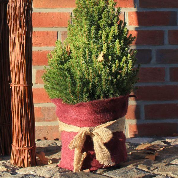 Jutematte Winterschutz für Pflanzen, rot