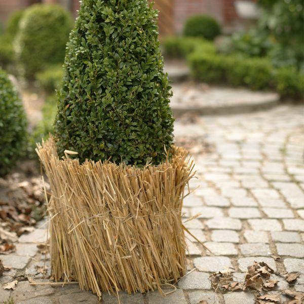 Strohmatte Winterschutz für Pflanzen