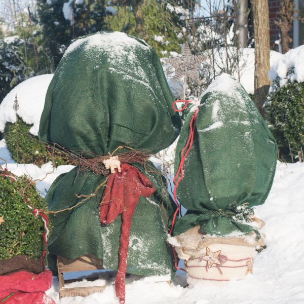 Jutesack als Winterschutz robustes Naturmaterial grün