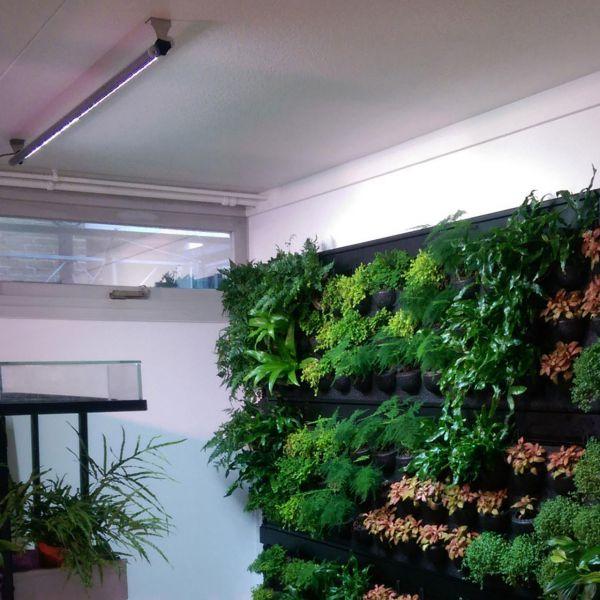 LED-Pflanzenlampe Lichterleiste Spots WALL Länge: 90 cm