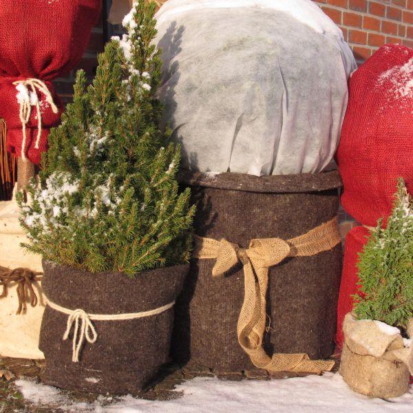 Schafwollmatte Frostschutz Pflanzen, braun