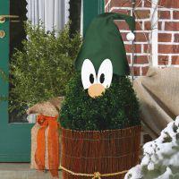 Wintertschutztipps Pflanzenkrone Winterschutz De