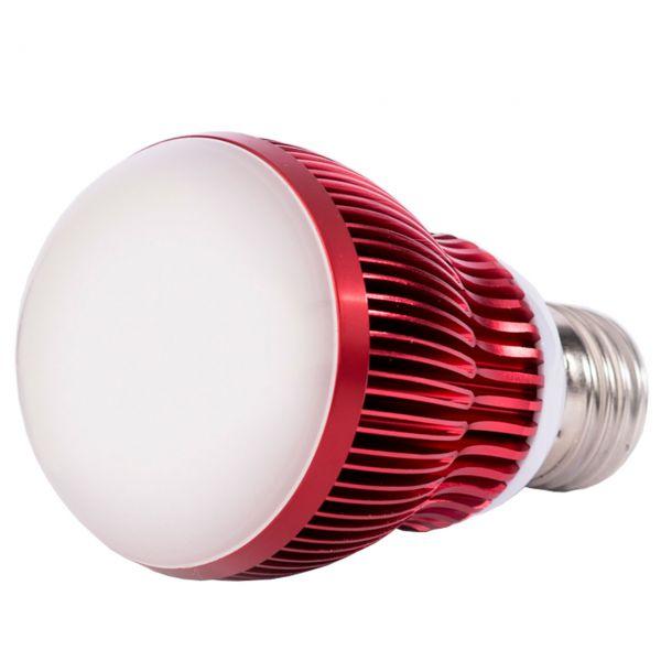 LED-Pflanzenlampe Überwinterung, 7 Watt-Birne Venso