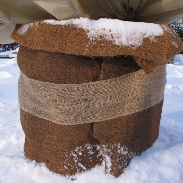 Kokosmatte 2cm dick Winterschutz natur