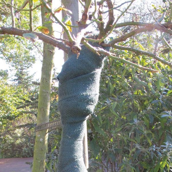 Juteband Wickelband Stammschutz grün