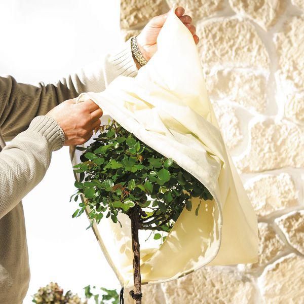 Kübelpflanzen-Vlieshaube, beige