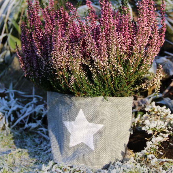 Jute-Übertopf Kübelpflanzen Stern, grau/weiß
